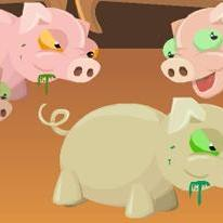 Swine Flu : Hamdemic!