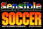 Sensible Soccer Online: International Edition