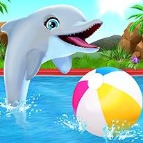 my-dolphin-show
