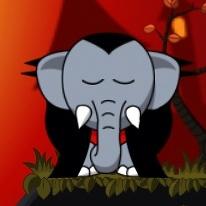 snoring-wake-up-elephant-transylvania